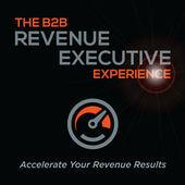 B2B Revenue Executive Experience